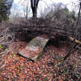 Trees have fallen over the stone bridge